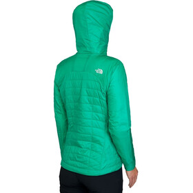 The North Face W's DNP Hoodie Bastille Green